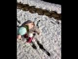 Cолнышко и Снег :)