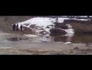 Дальнобойщики Севера . Дороги крайнего севера Зимник RUSSIAN ROADS 6