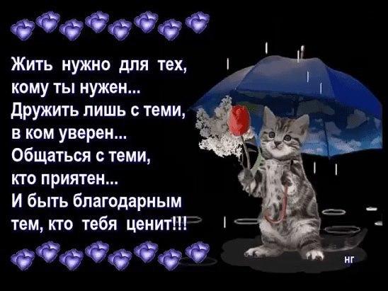 https://pp.vk.me/c631324/v631324656/13bdc/fk0uWXYXB9Y.jpg