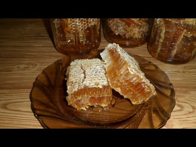 Мед в сотах. Honey comb. Honey.