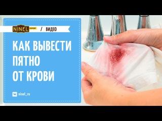 Как в домашних условиях вывести пятна крови