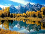 Absurd-Colours of Autumn