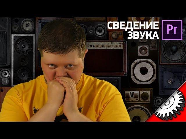 БЫСТРОЕ СВЕДЕНИЕ ЗВУКА В Premiere - оптимальный способ