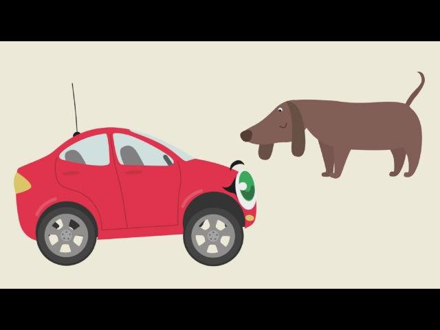 БИБИКА Кошка собака хомячок черепаха Развивающий мультик для малышей про машинки и животных