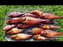 Коптим окуня после рыбалки