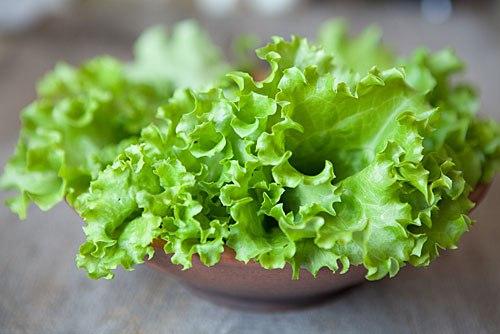 Види салати фото
