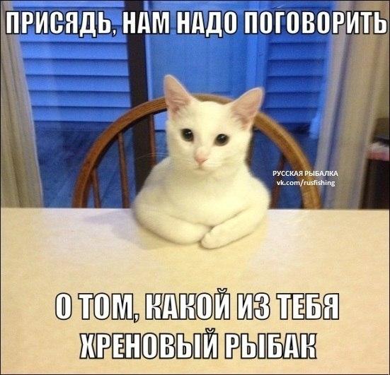 http://cs631326.vk.me/v631326348/1ba82/s-VnwlYHyEM.jpg