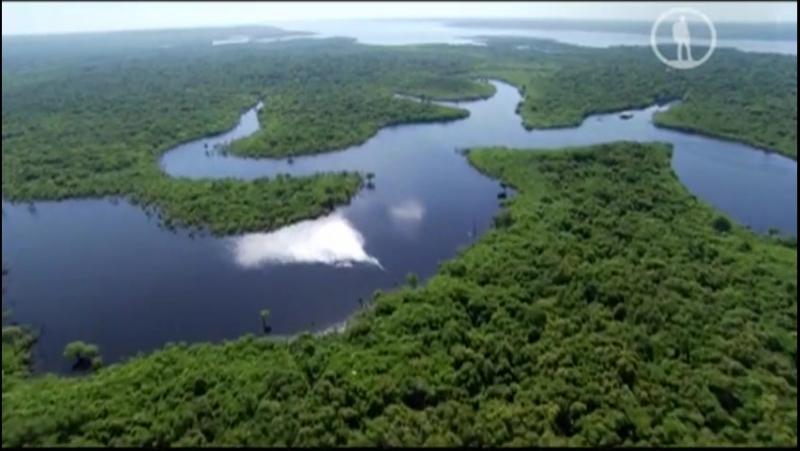 BBC Чудеса природы Жизнь на грани 2 серия из 3 Вода Earths Natural Wonders