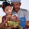 Программа Развития ООН Туркменистан