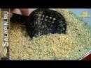 Классическая салапинская каша бюджетная самодельная прикормка на леща карася карпа salapinru