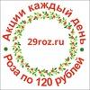29roz - Доставка цветов в Архангельске за 1 час