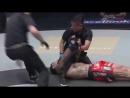 LowKick MMA - Nastyukhin vs. Lisita KO