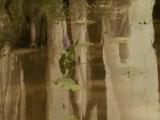 Вне времени / The Lovers (2015) BDRip [1080p]