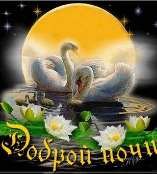 http://cs631328.vk.me/v631328150/1f947/-9NrgphHK3k.jpg