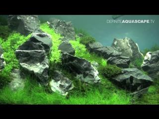Aquascaping - (The Art of the Planted Aquarium 2013 XL) - pt.3
