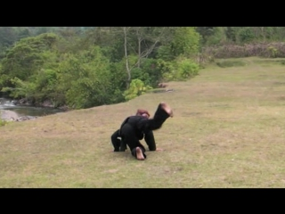 Pencak Silat Harimau Singgalang by Haji Syofian Nadar 01