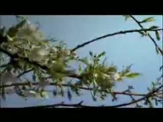 BBC Планета Земля/Planet Earth (2006) Трейлер (сезон 1)