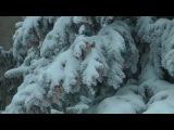 Изморозь - Отморозь (2 11) альбом слушать онлайн