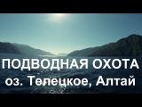Подводная охота на Телецком озере, республика Алтай, сентябрь 2015
