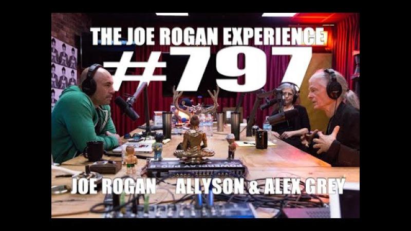 Joe Rogan Experience 797 Alex Allyson Grey