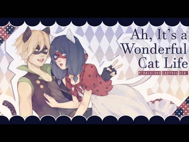 Ah, It's a Wonderful Cat Life ❘ ❮Miraculous Ladybug❯ MV
