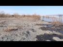 Весенняя охота в Якутии на уток и гусей