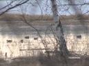 Весенняя охота на уток  в Якутии