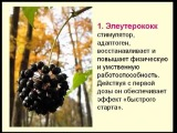 Доктор Александр Штабель о вита спрее Vitality ! mp4