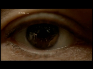 BBC Тайная жизнь хаоса BBC The secret life of chaos (2010)