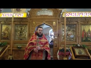 Проповедь в светлую седьмицу. Отец Вячеслав Нефедов.