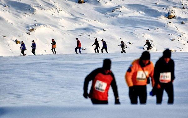 Polar Circle Marathon, Полярный Круговой Марафон