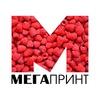 МегаПринт - УФ-печать в Пензе