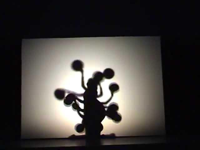 Attraction Black light theatre Shadow Concept