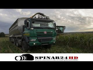 TATRA Phoenix AgroTruck | Claas Jaguar 980 - Corn Silage 2015
