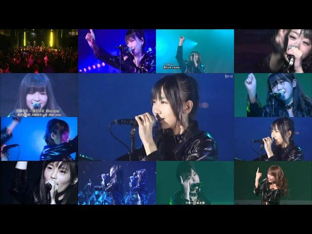 AKB48 [BLUE ROSE] Chorus 大合唱 Multi-Cam ver.