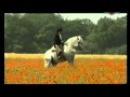 Mario Luraschi moje Magiczne Konie part2