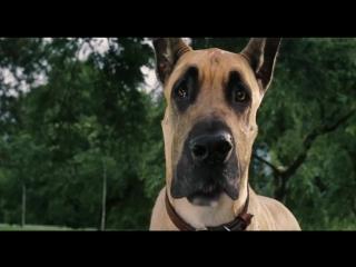 Мармадюк (2010) Трейлер [720p]
