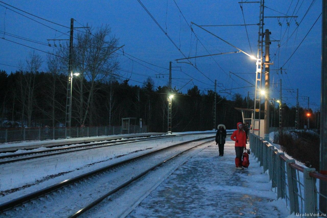 Станция Палкино