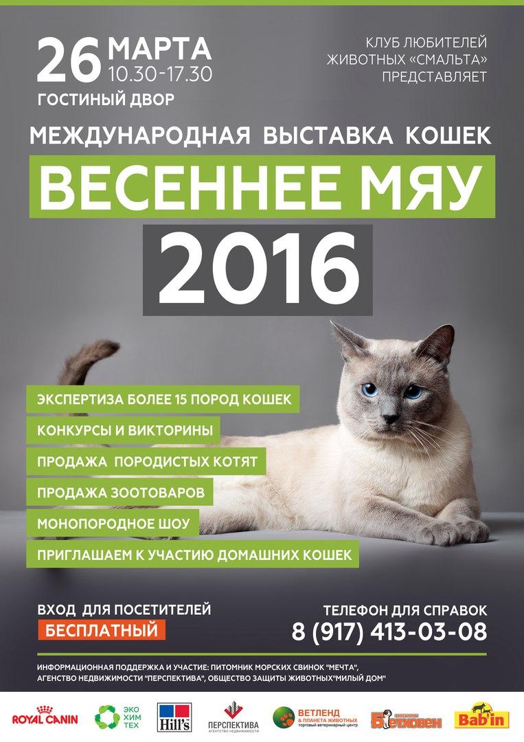 Результаты конкурса кот 2017