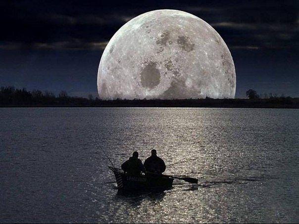ночная рыбалка правила