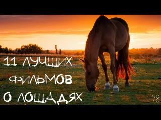 11 ЛУЧШИХ фильмов о ЛОШАДЯХ