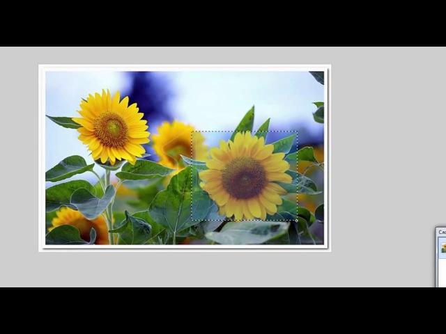 Как вырезать элемент картинки в Paint net