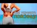 Как укрепить поясницу упражнения с фитболом rfr erhtgbnm gjzcybwe eghf ytybz c abn jkjv