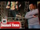 Званый ужин - все драки и скандалы до 2016 (часть 1)