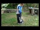 Tani's Heeling Video