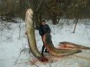 Невероятная рыбалка Ловля сомов Осторожно ненормативная лексика 18