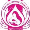 Лига молодых матерей Подмосковья