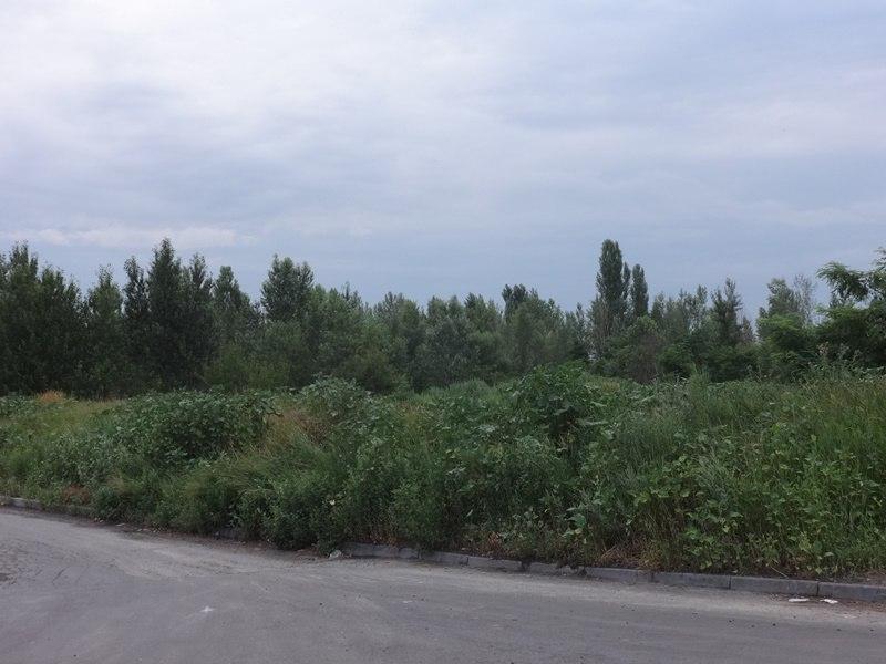 Сезон страданий начинается для харьковчан (ФОТО, ВИДЕО)