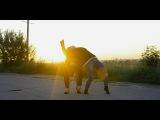 Hozier – Work Song | choreography by Olesya Ukrainets |
