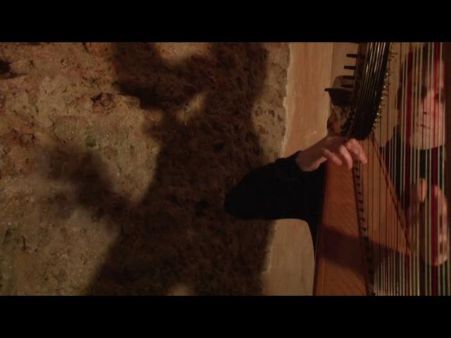 Franz Liszt - La Campanella - Sylvain Blassel, harp